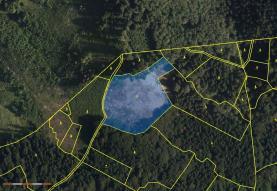 Prodej, les, 12426 m2, Janová