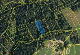 Prodej, les, 3528 m2, Návsí