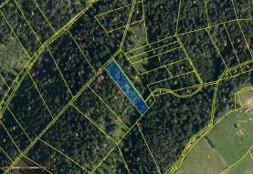 Prodej, les, 3334 m2, Návsí