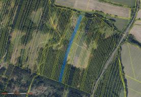 Prodej, les, 12997 m2, Nová Hradečná