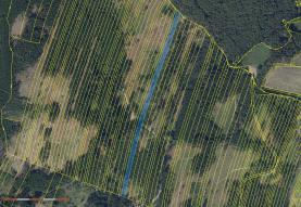 Prodej, les, 10677 m2, Nová Hradečná