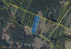 Prodej, les, 5658 m2, Nová Hradečná