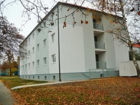 Pronájem, nebytové prostory 108 m2, Plzeň, ul. Sukova