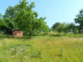 Prodej, pozemek, 1008 m2, Dolní Nětčice