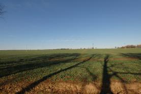(Prodej, pole, 8096 m2, Chýně, Praha - západ), foto 4/8
