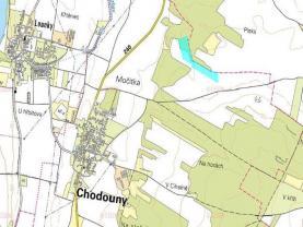 (Prodej, pozemek, 37657 m2, Chodouny), foto 3/4