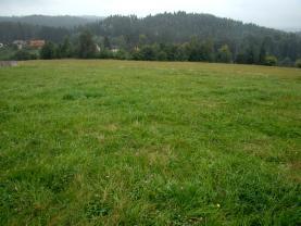 Prodej, pozemek, Holín - Pařezská Lhota