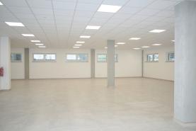 Pronájem, komerční prostory, 349 m2, Opava - Předměstí