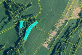 Prodej, les, 3736 m2, Stružnice-Jezvé