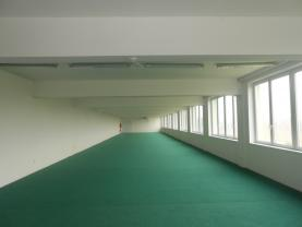 Pronájem, obchodní prostory, 600 m2, Týniště nad Orlicí
