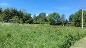 Prodej, pozemek 5813 m2, Dětřichovice