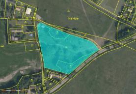 Prodej, pozemek, 7493 m2, Krsy