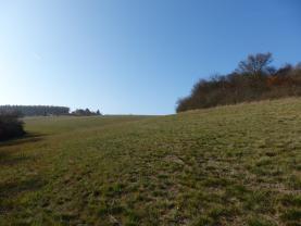 Prodej, orná půda 41966 m2, Beroun - Zdejcina