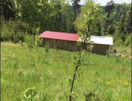 (Prodej, pozemek, 28550 m2, Partutovice), foto 4/4