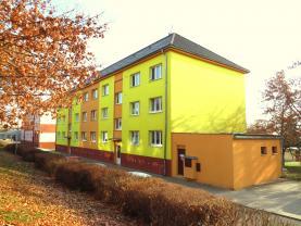 Prodej, byt 1+1, 42 m2, Habartov, ul. Raisova