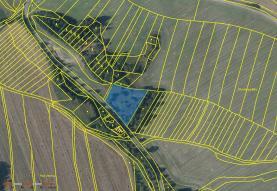 Prodej, pozemek, 3941 m2, Konice - Ladín
