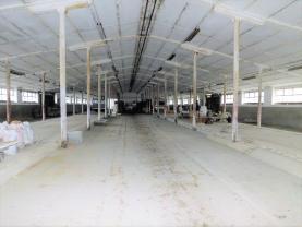 (Prodej, výrobní areál, 21263 m2, Odrava), foto 2/27