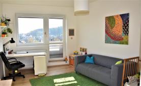 Prodej, byt 1+kk, 30 m2, Brno, ul. Rybářská