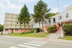 Pronájem, domov mládeže, 300 m2, Šilheřovice