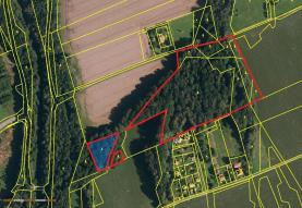 Prodej, les, 26687 m2, Nižní Lhoty
