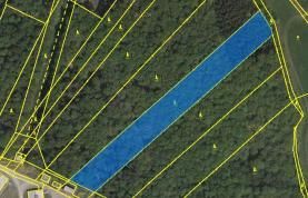mapa (Prodej, les, 9308 m2, Kasalice), foto 3/3