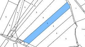 mapa (Prodej, les, 9308 m2, Kasalice), foto 2/3