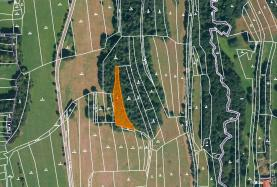 Prodej, les, 1745 m2, Drnovice u Valašských Klobouk
