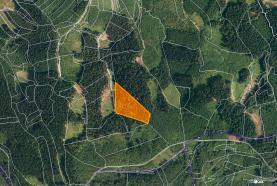 Prodej, les, 16652 m2, Lhota u Vsetína