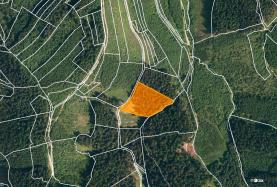 Prodej, les, 7226 m2, Lhota u Vsetína