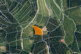 Prodej, les, 4855 m2, Lhota u Vsetína