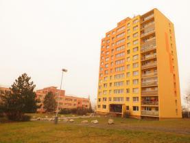 Pronájem, byt 2+kk, 40 m2, Beroun, ul. Košťalkova