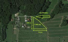 Prodej, pole, 7950 m2, Horní Těrlicko