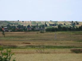 (Prodej, pole, 7950 m2, Horní Těrlicko), foto 2/3