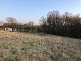 Prodej, pozemek, 5167 m2, Klimkovice