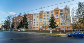 Prodej, byt 3+1, 67 m2, Plzeň, Heyrovského ul.
