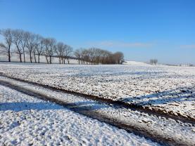 Prodej, pole, 30 570 m2, Luboměř