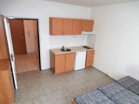 Prodej, byt 1+kk, Plzeň, ul. Mandlova