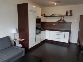 Pronájem, byt 2+kk, 47 m2, Ostrava, ul. Jantarová
