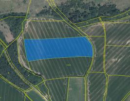 Prodej, pole, 31541 m2, Vodní Újezd, Dobřany