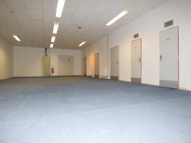 Pronájem, komerční prostory, 207 m2, Opava - Předměstí