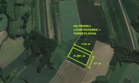 Prodej, les, 5481 m2, Bernartice nad Odrou
