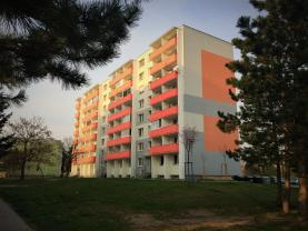 Prodej, byt 1+1, 33 m2, Břeclav, ul. U Splavu