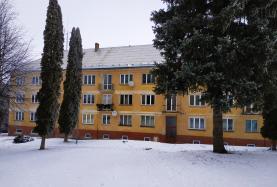 Prodej, byt 3+1, 60 m2, Plesná