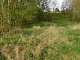 pohled na pozemek (Prodej, les, 1927 m2, Chuderov - Libov), foto 4/6