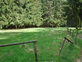 (Prodej, pozemek, 4316 m2, Kameničky), foto 3/4