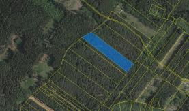 Prodej, les, 17203 m2, Vlašim
