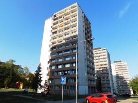Pronájem, byt 1+kk, 22 m2, Most ul. M.G. Dobnera