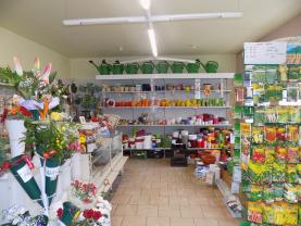 obchod (Prodej, rodinný dům, 261 m2, Krupka, ul. Komenského), foto 4/11