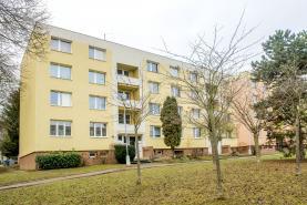 Prodej, byt 1+1, Brno, ul. Vondrákova