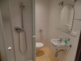 Koupelna (Pronájem, byt 1+1, 35m2, Děčín-Želenice)